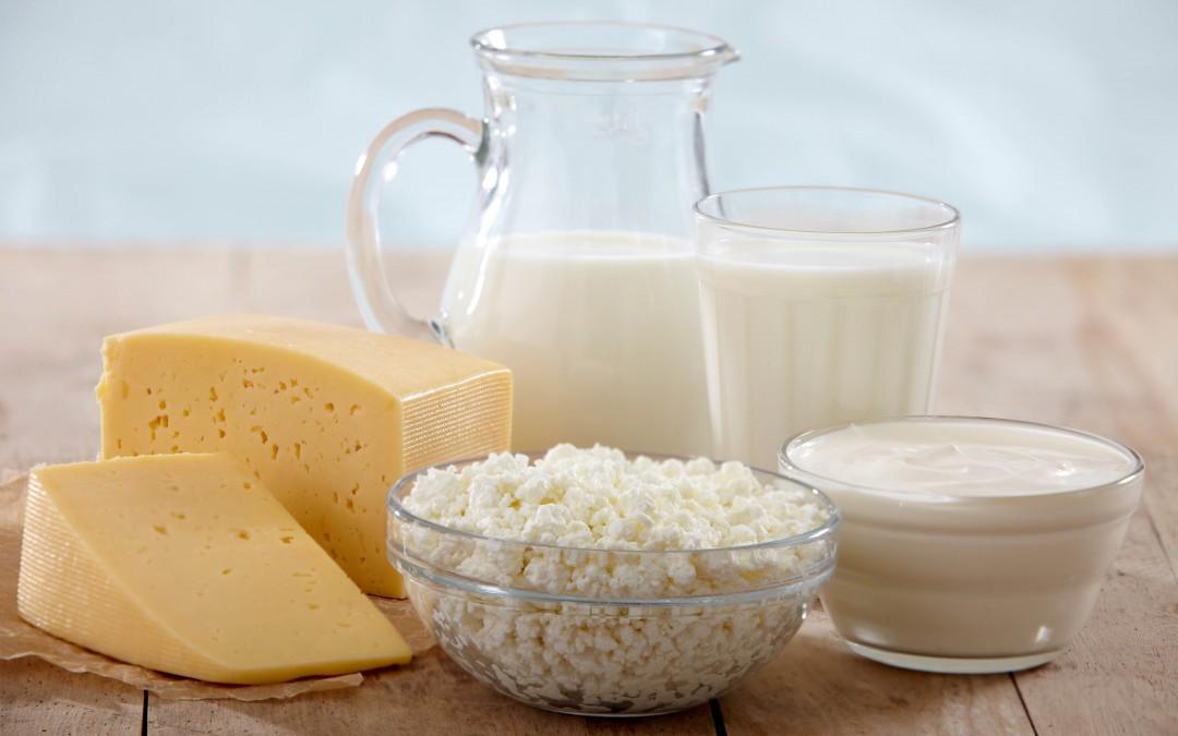 №4: Месо и месна промишленост – заключение. Млечни продукти