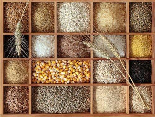 №6: Сурови семена, ядки, бобови и гъби